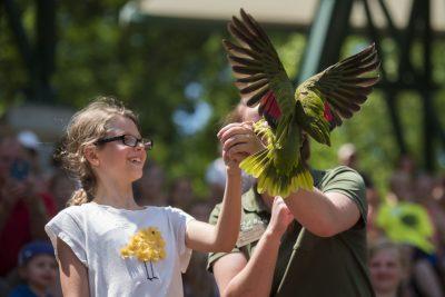 Natalie Ledonne / Minnesota Zoo