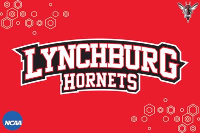 Lynchburg Hornets graphic