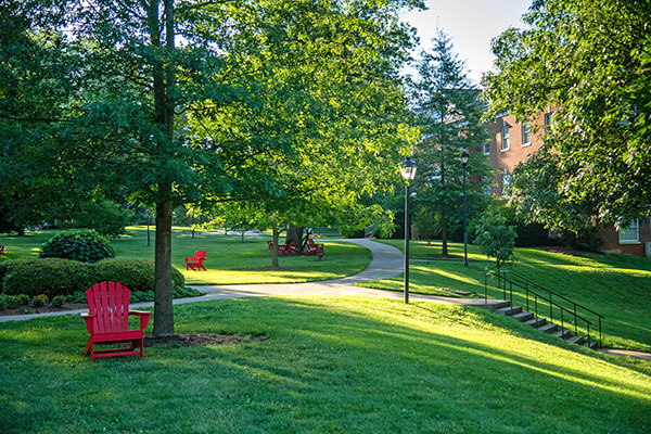Two new graduate certificates at Lynchburg cover nonprofit marketing, fundraising, and management