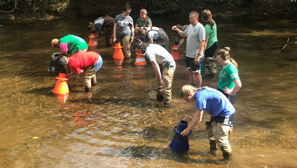 "Students stand in the Pedlar River and look through ""view buckets"" to search the river bottom"