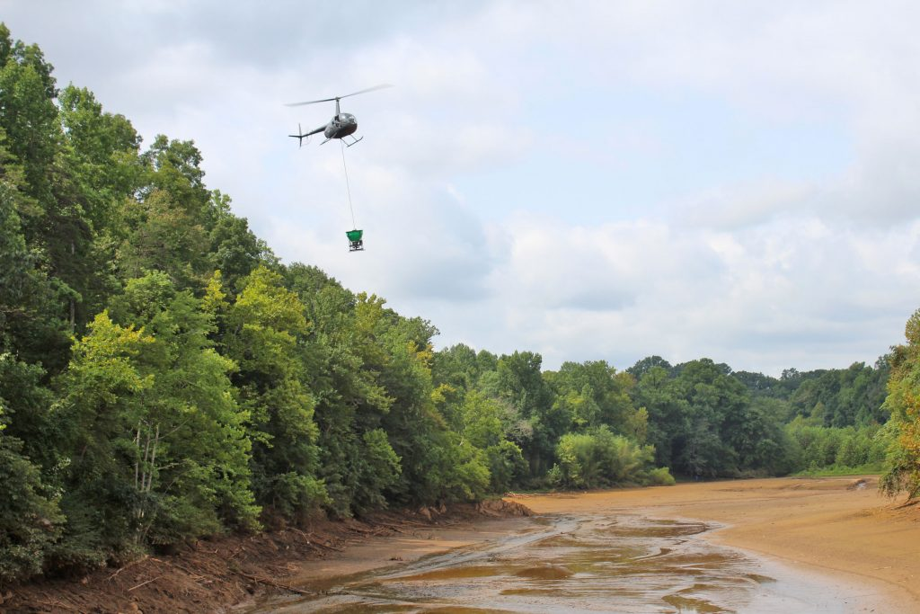 A helicopter flies over a muddy lake bed, while an attachment below spreads seeds on the sediment.