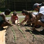 Five ways Lynchburg College strives for sustainability