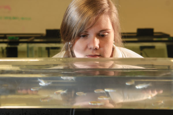 Katie Roderick looks at fish in a tank
