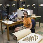 Herbarium goes online