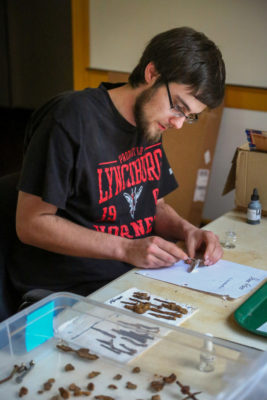 Eric Taylor working in archaeology lab