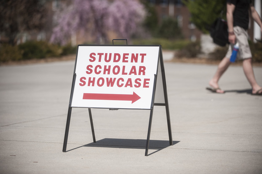 Students will shine at 2016 showcase April 6