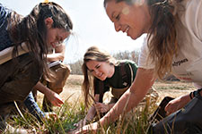 Students studying stream ecology in the field
