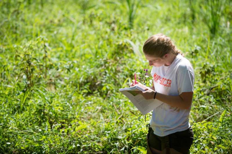 A student takes notes at College Lake
