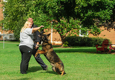 K-9 demonstration on the Dell