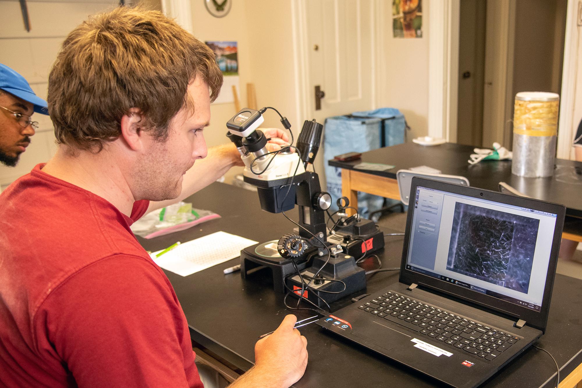 Paul Gehl looks through a microscope via a laptop
