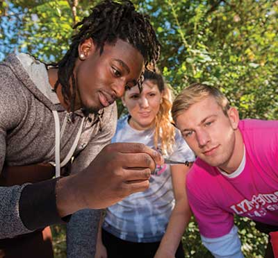Group of three students studying a specimen in nature