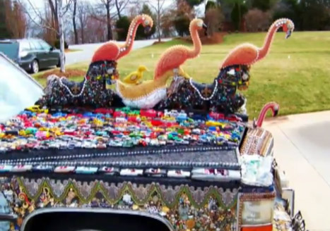 Flamingos on the hood