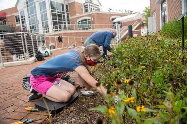 Lynchburg students and staff work to 'meet the needs of the community'