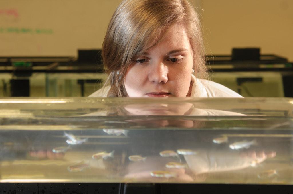 Katie Roderick looking at fish tank