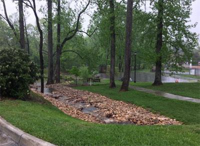 Rain garden on the LC campus
