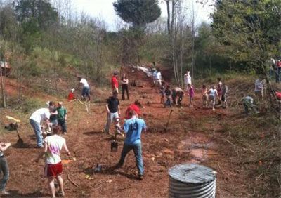 Group of students and faculty creating a wetland environment